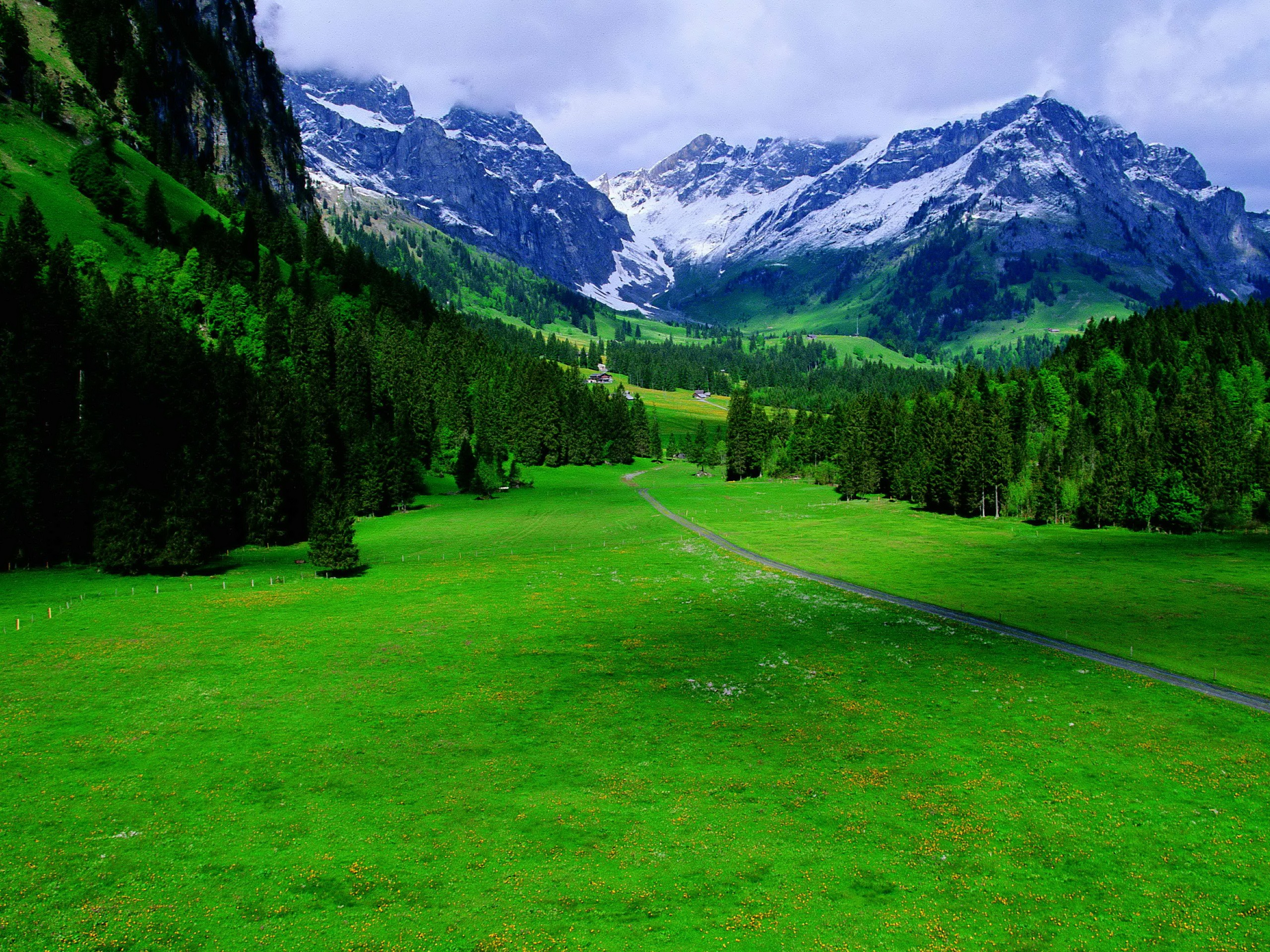 green-landscapes-switzerland-wallpaper-1